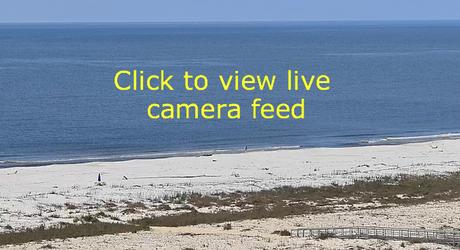 Webcams on Dauphin Island